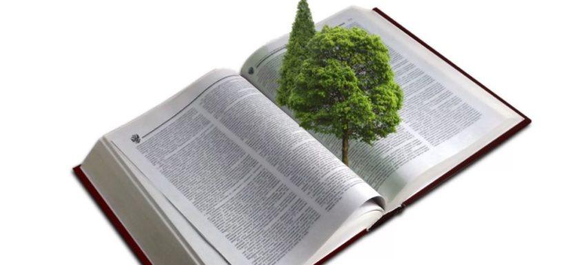 устранение вреда екологии