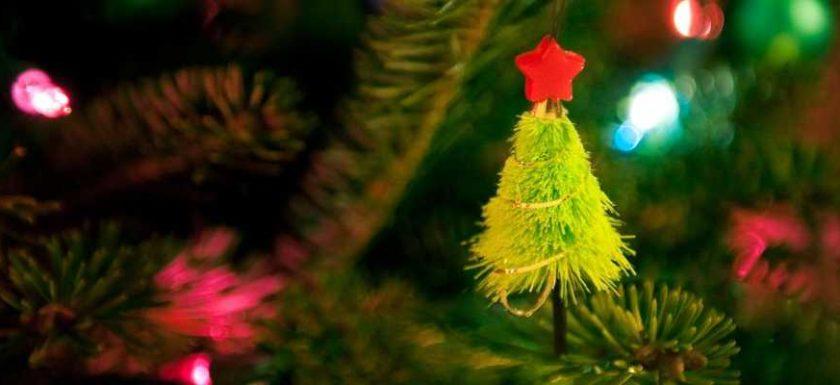 пункты приема новогодних елок