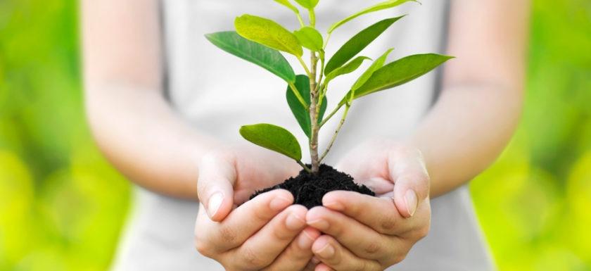 Стандартизация в области охраны окружающей среды