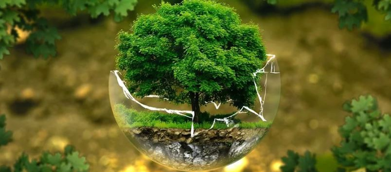 ответственность за природу